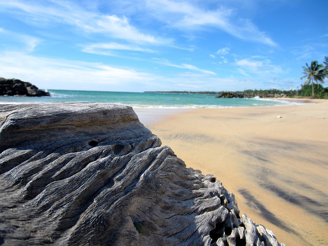 pláž na Sri Lance