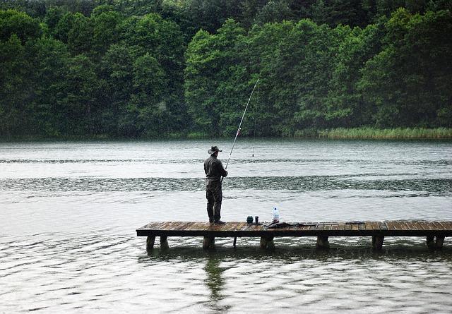 lov v dešti